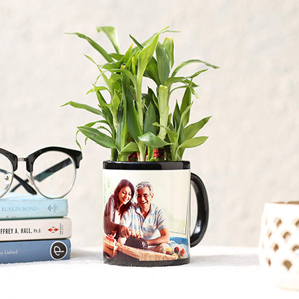 Lucky Bamboo In Personalised Black Mug: Personalized Fathers Day Gifts 2019