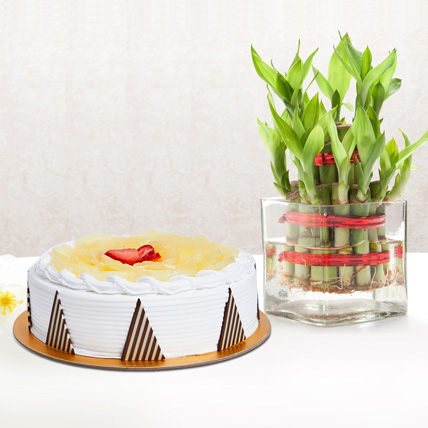 Pineapple Cake and Lucky Bamboo Combo: Fathers Day Cakes