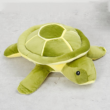 Turtle Soft Toy: Soft Toys