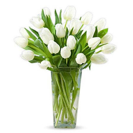 20 White Tulips: Friendship Day Gifts