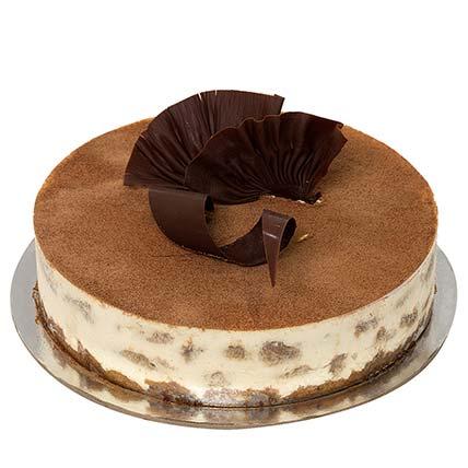 Special Tiramisu: Tiramisu Cakes
