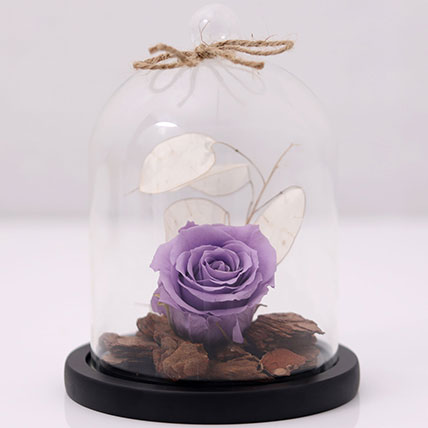 Purple Forever Rose In Glass Dome: Forever Roses