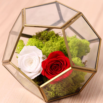 Red and White Roses In Designer Base: Flower Box Dubai