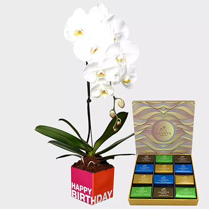White Phalaenopsis Plant and Godiva Chocolates: