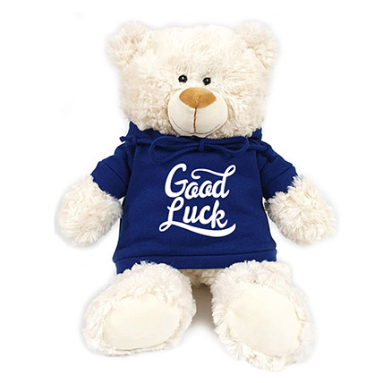 Fluffy Teddy With Blue Hoodie: Soft Toys