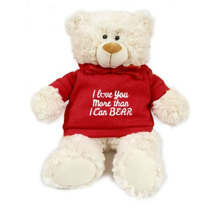 Lovable Fluffy Teddy Bear: Rose Day Gifts