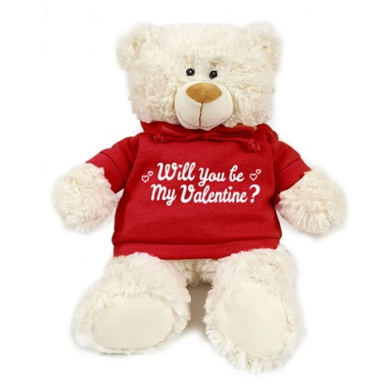 Valentine Proposal Teddy: Teddy Day Gifts