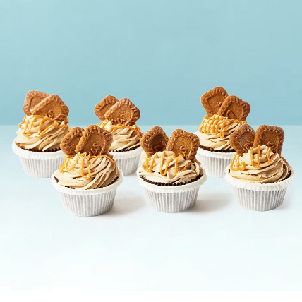 Lotus Biscoff Cup Cakes: New Arrival Gifts