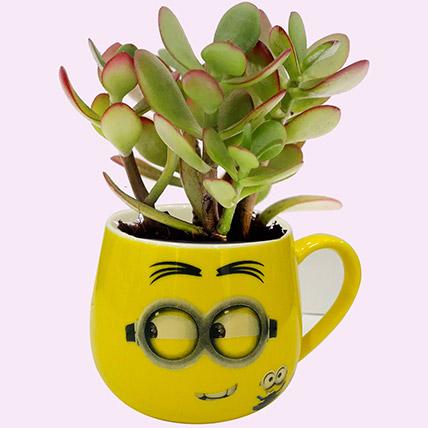 Desktop Plants Online