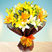 Sunny Asiatic Lilies OM